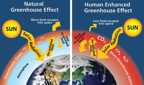 Carbon Dioxide, Methane, Nitrous Oxide, and the Greenhouse Effect ...