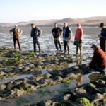 Inspection of aquaculture operations on Tomales Bay. CDFW- Image source: Tom Moore