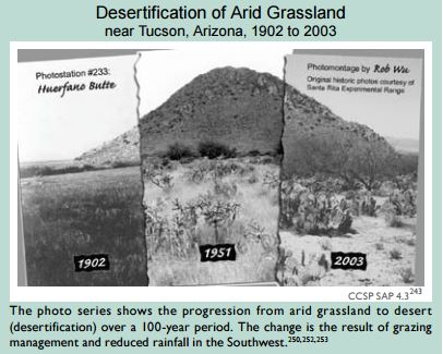 Climate Change Impacts To Grasslands Conservation In A Changing