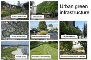 GreenInfrastructureExs