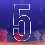 12_28_16_brian_top10_5coralreef_720_551_s_c1_c_c