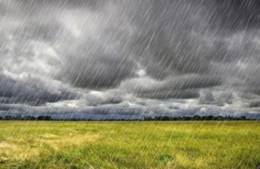 More Days of Heavy Rain - Conservation in a Changing Climate